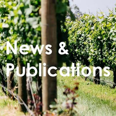 RNG Lawyers News and Publications